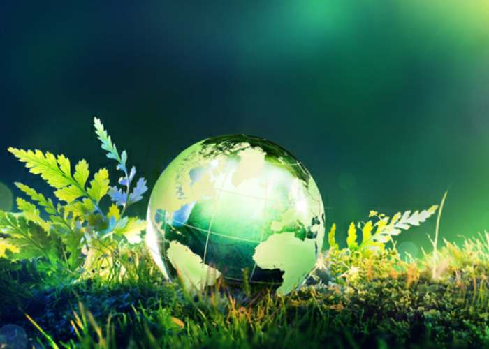 Environmental Training Courses in Bedforshire, Northamptonshire, London, Birmingham, Manchester & Bristol.